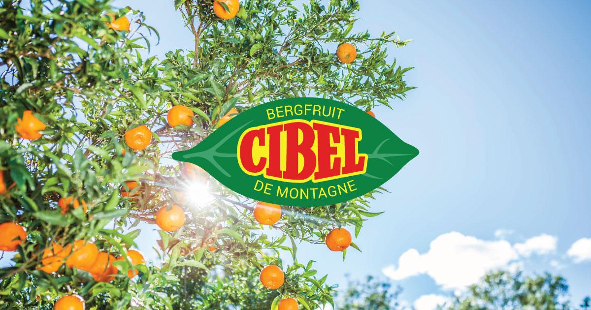(c) Cibel.be